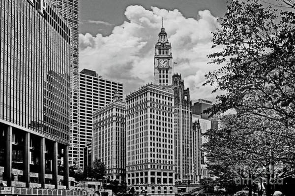 Photograph - Downtown Chicago by Carlos Alkmin