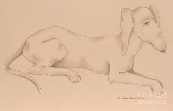 Drawing - Doxies, Bad To The Bone by Jean Clarke