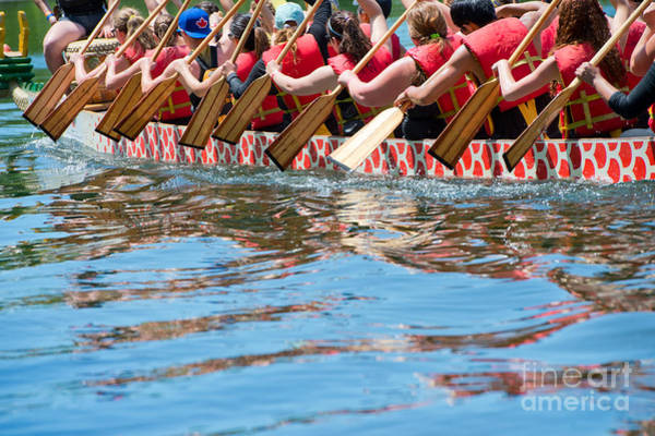 Competition Wall Art - Photograph - Dragon Boat by Oceanfishing