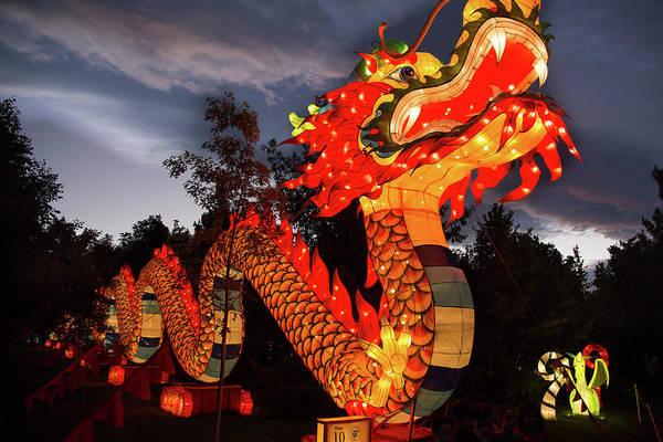 Photograph - Dragon Lights by Fred DeSousa