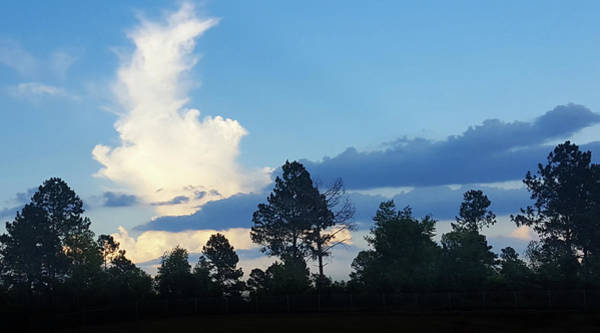 Wall Art - Photograph - Dramatic Blue And White Clouds  by Art Spectrum