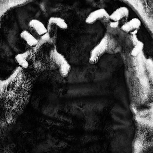 Photograph - Dream Monster by Sharon Popek
