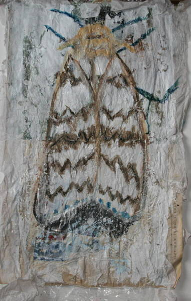 Mixed Media - Dream Of Moth by Siobhan Dempsey