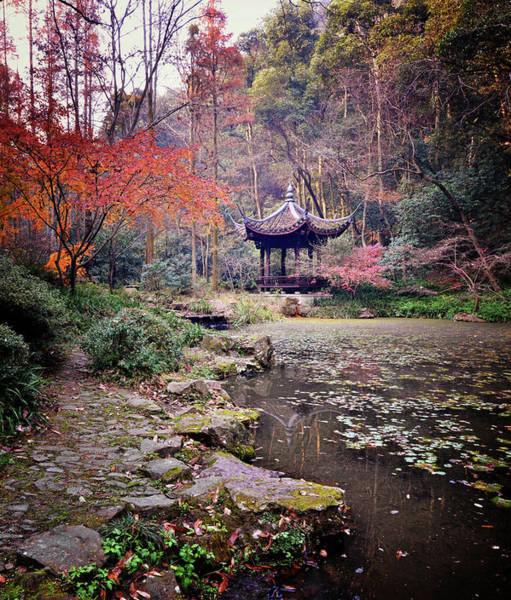 Chinese Culture Photograph - Dreaming Of Tiger Spring Hangzhou, China by Andy Brandl