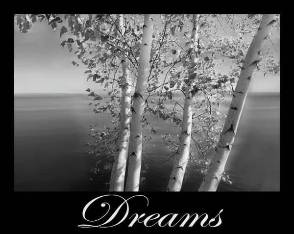 Photograph - Dreams Art Birch Trees On The Lake In Black And White by Debra and Dave Vanderlaan