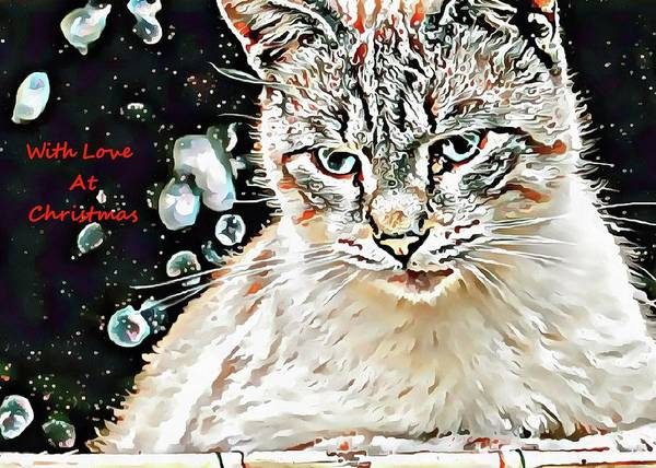 Photograph - Dreams Of Being A Snow Leopard by Dorothy Berry-Lound