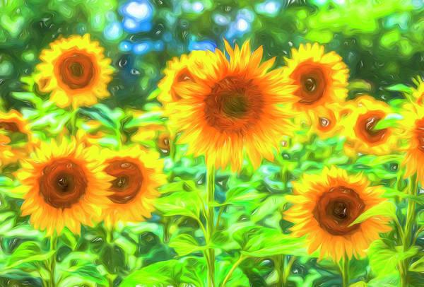 Wall Art - Photograph - Dreams Of Sunflowers  by David Pyatt