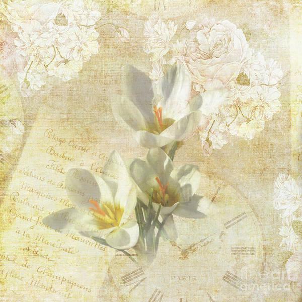 Saffron Digital Art - Dreamy Crocus by Elisabeth Lucas