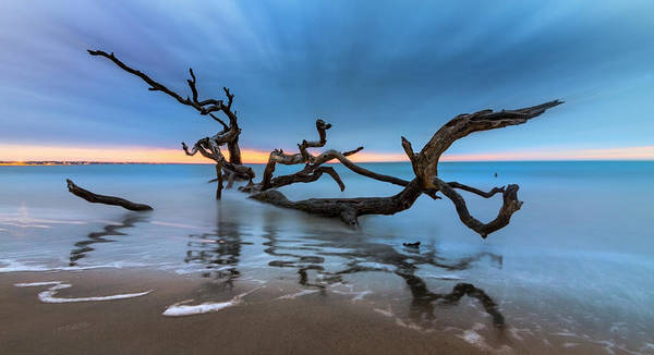Wall Art - Photograph - Dreamy Tide Panorama by Debra and Dave Vanderlaan