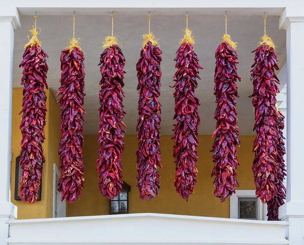 Wall Art - Photograph - Dried Bunches Of Chilies Reflect by Panoramic Images