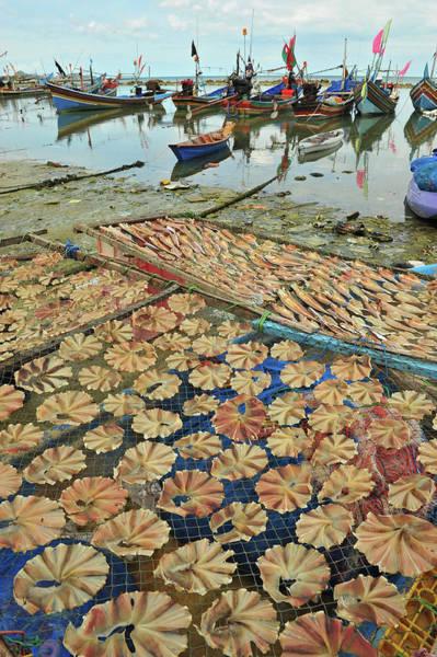 Fishing Boat Photograph - Dried Fish And Fishing Boats by Kampee Patisena