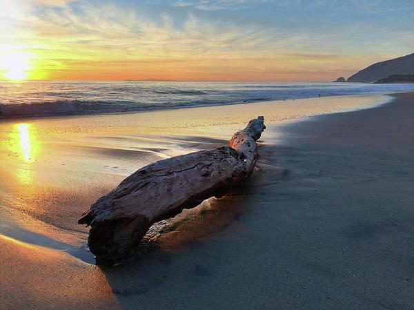 Photograph - Drift Wood At Sunset II by John Rodrigues