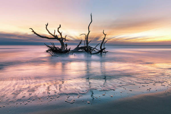 Wall Art - Photograph - Drifting At  Dawn by Debra and Dave Vanderlaan