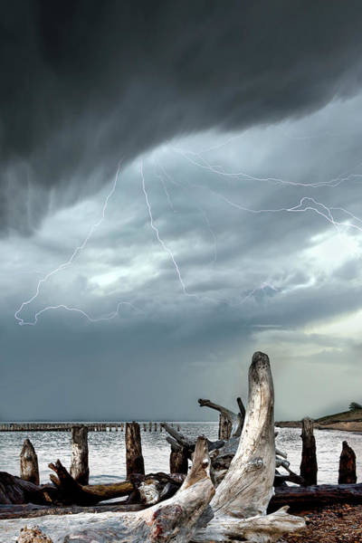Photograph - Driftwood Beach Whitefish Point Michigan by Evie Carrier