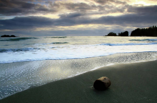 Storm Photograph - Driftwood On The Beach Near Tofino by Imaginegolf
