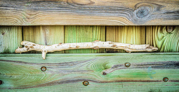 Photograph - Driftwood Resting On Textured Wall by Gary Slawsky