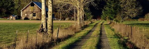 Photograph - Driveway Home by Jerry Sodorff