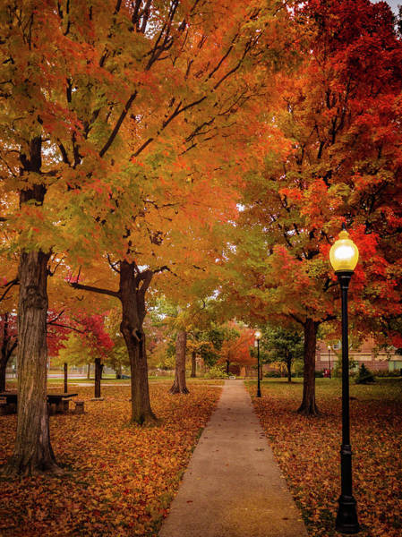 Photograph - Drury Autumn by Allin Sorenson