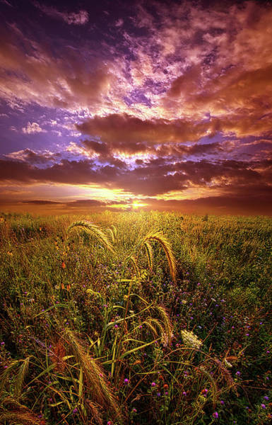 Photograph - Drwing Near by Phil Koch