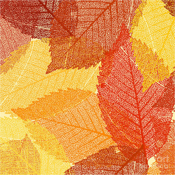 Wall Art - Digital Art - Dry Autumn Leaves Template. Eps 8 by Eliks