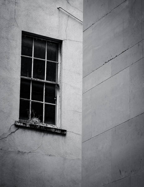 Temple Bar Wall Art - Photograph - Little Life Bw by Nicole Robinson