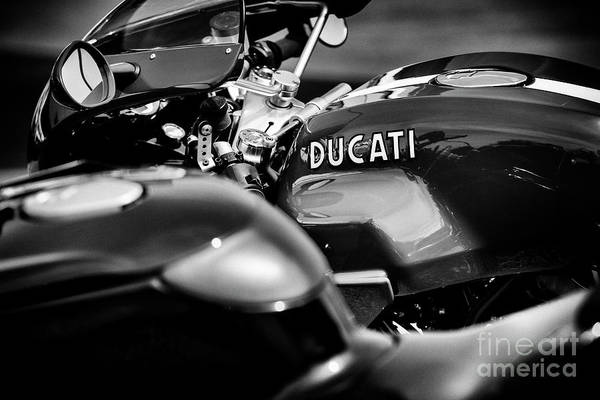 Wall Art - Photograph - Ducati Sport 1000s Monochrome by Tim Gainey