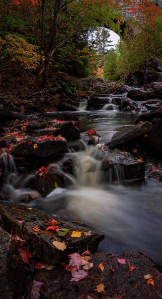 Photograph - Duck Brook by Darylann Leonard Photography