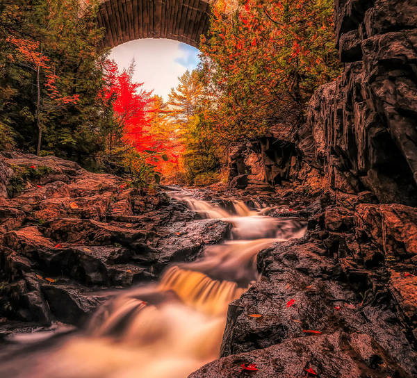 Photograph - Duck Brook Waterfall Acadia by Dan Sproul