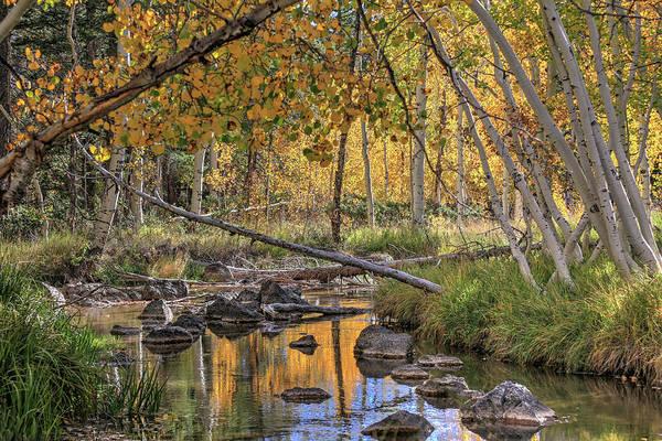 Wall Art - Photograph - Duck Creek 2 by Donna Kennedy