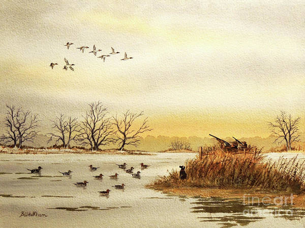 Wall Art - Painting - Duck Hunting For Pintails by Bill Holkham
