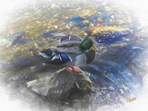 Digital Art - Duck On A Rock. by Rusty R Smith