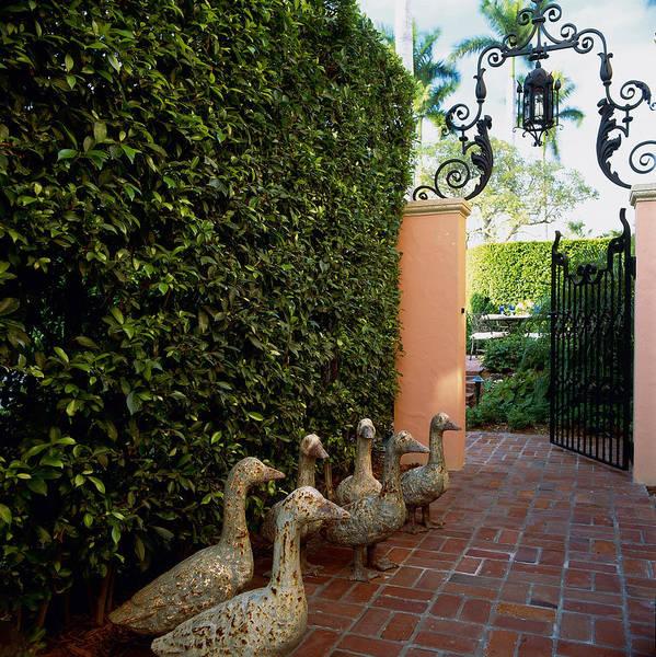 Palm Beach Photograph - Duck Sculptures At Garden Gate, Palm by Richard Felber