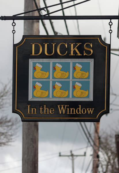 Wall Art - Photograph - Ducks In The Window by Suzanne Gaff