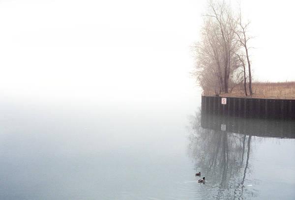 Usa Navy Photograph - Ducks by Ryan Mcginnis