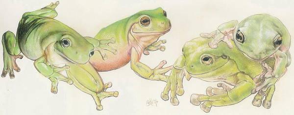 Mixed Media - Dumpy Tree Frog by Barbara Keith