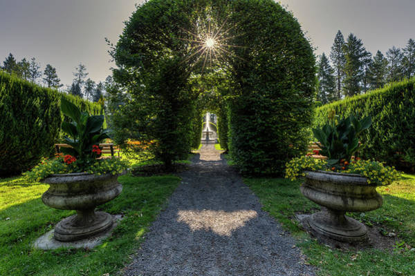 Photograph - Duncan Garden Sun Burst by Mark Kiver