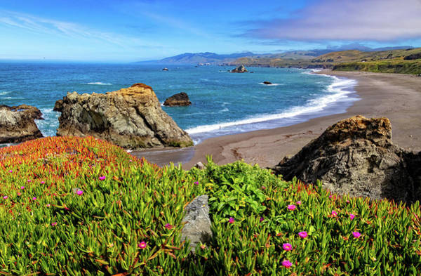 Photograph - Duncans Landing On The Sonoma Coast by Carolyn Derstine
