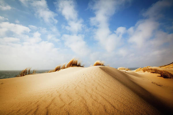Wall Art - Photograph - Dune by Cinoby