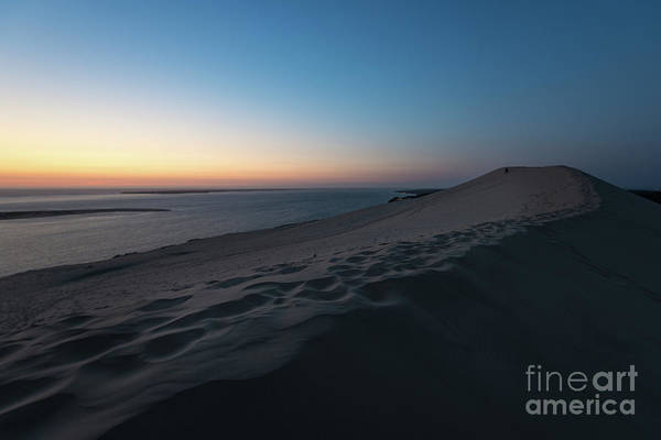Photograph - Dune Du Pilat At Sunset by Hannes Cmarits