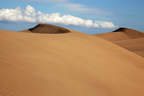 Wall Art - Photograph - Dune Landscape Dunes Of Maspalomas Dunas De Maspalomas Cloud Formation Nature Reserve Gran Canaria by imageBROKER - Harry Laub