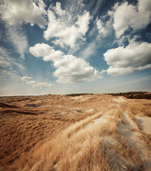 Journey Photograph - Dune Landscape by Ppampicture