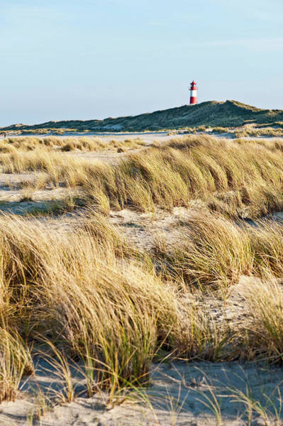 Wall Art - Photograph - Dunes And Lighthouse At Ellenbogen by Arnt Haug / Look-foto