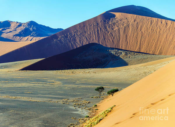 Wall Art - Photograph - Dunes In Sossusvlei Plato Of Namib by Vadim Petrakov