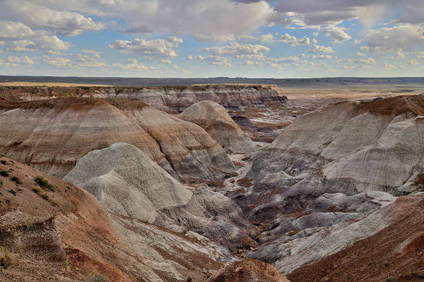 Photograph - Dunes Of Blue Mesa In Petrified Forest by Ray Mathis