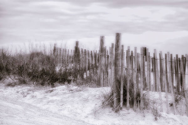 Photograph - Dunes by Van Sutherland
