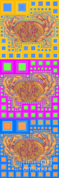Photograph - Dungeness Crab In Abstract Squares 20190203 Long Vertical by Wingsdomain Art and Photography