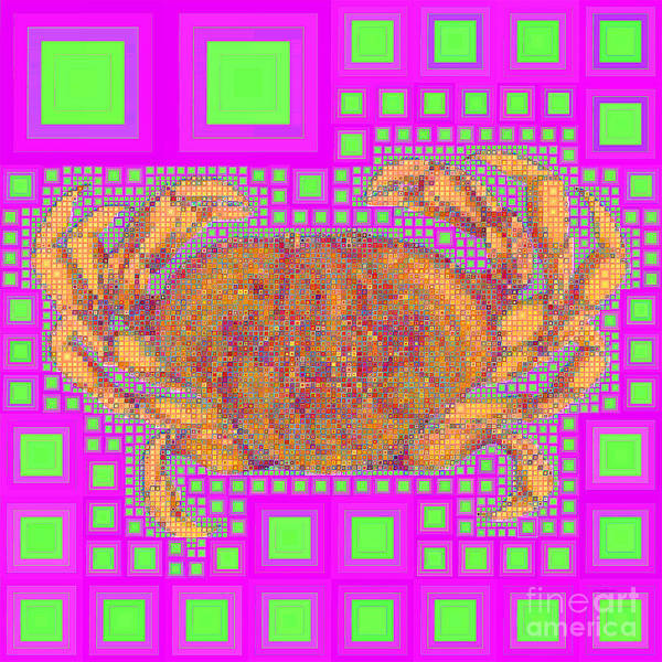 Photograph - Dungeness Crab In Abstract Squares 20190203a M108 by Wingsdomain Art and Photography