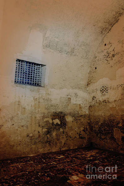 Photograph - Dungeon In The Castello Estense by Marina Usmanskaya