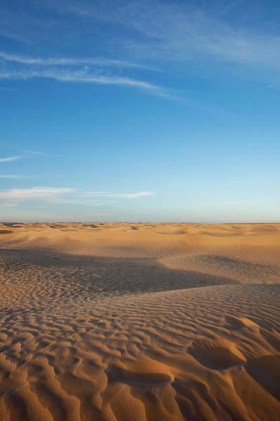 Tunisia Wall Art - Photograph - Dusk At Great Dune, Douz, Sahara by Danita Delimont