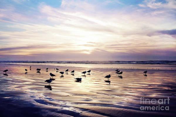 Wall Art - Photograph - Dusk On The Beach by Sylvia Cook